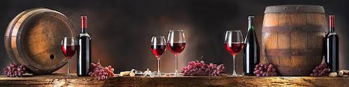 Logo 55 Sfumature di Vino
